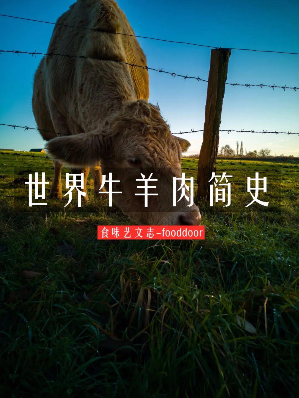 为什么新疆捐了牛,蒙古捐了羊?